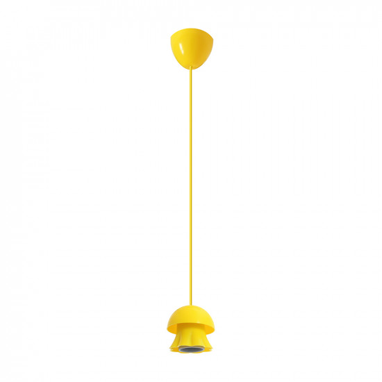 Light ERKA 101, ceiling mounted, 60W, yellow , Е27